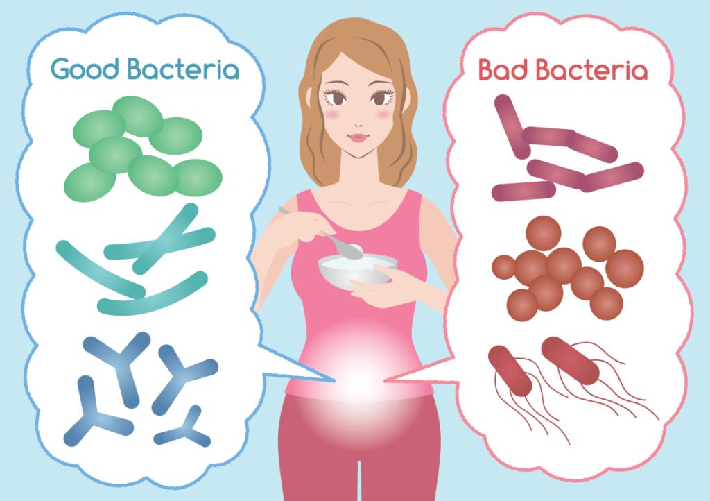 Good-Bad-Bacteria